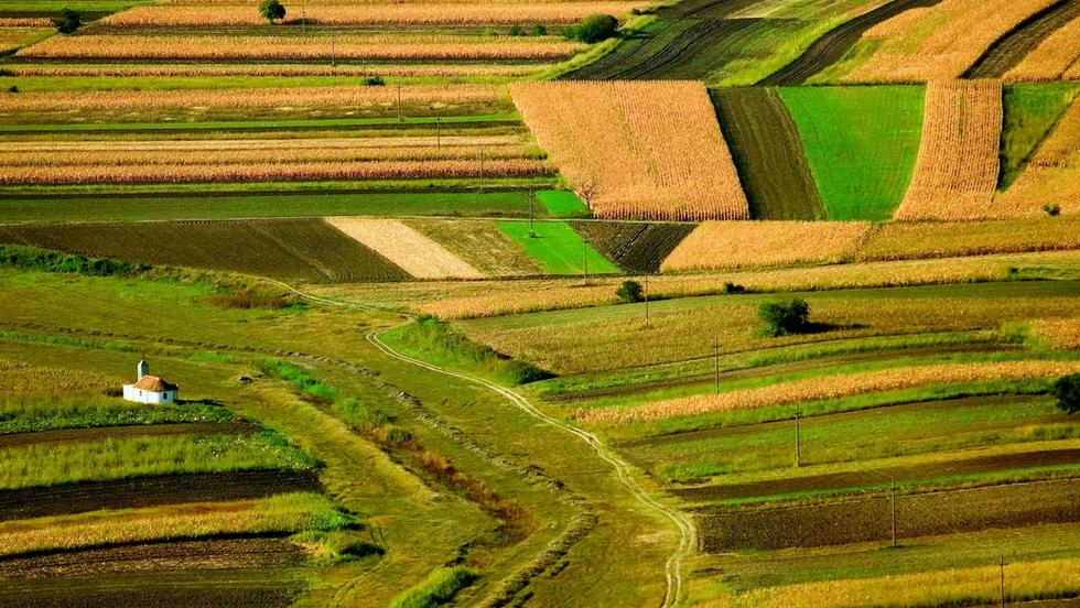 Otvoren natječaj za najboljeg mladog poljoprivrednika/cu EU