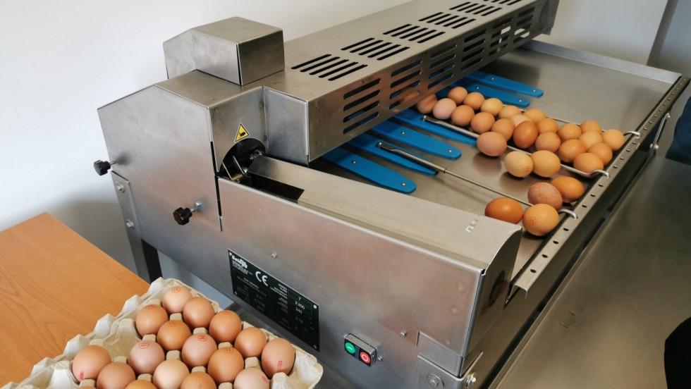 Vukovarsko-srijemska županija: U Lovasu svečano otvoren Pakirni centar za jaja iz slobodnog uzgoja
