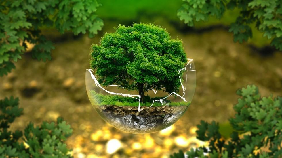 Radionica: Strateška procjena utjecaja strategije, plana i programa na okoliš