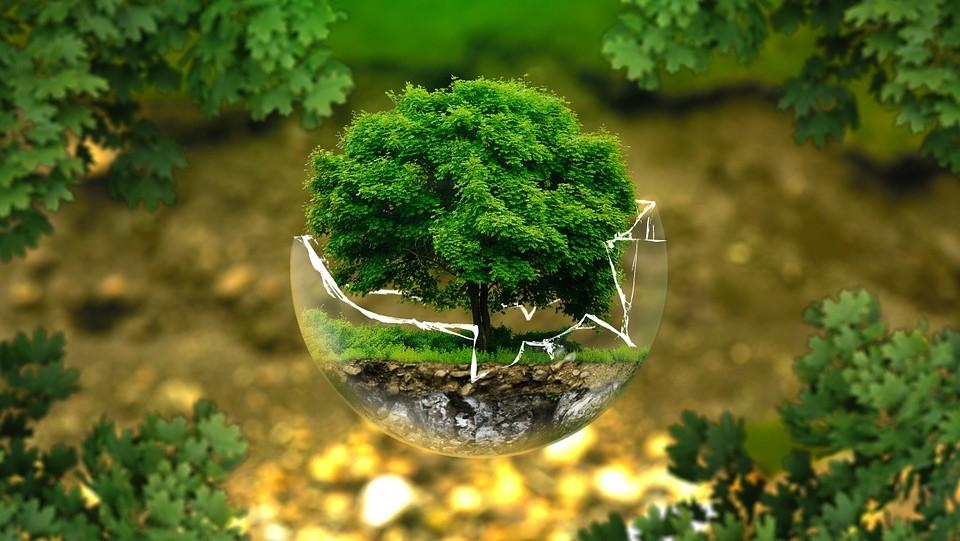 Poziv na radionicu: Strateška procjena utjecaja strategije, plana i programa na okoliš