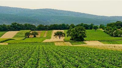 Krapinsko-zagorska županija sufinancira troškove izrade web stranice i promotivnih materijala za poljoprivrednike